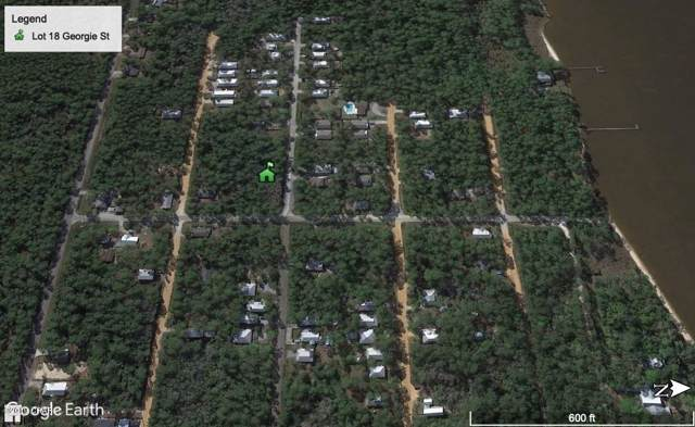 Lot 18 E Georgie Street, Santa Rosa Beach, FL 32459 (MLS #688409) :: Keller Williams Emerald Coast