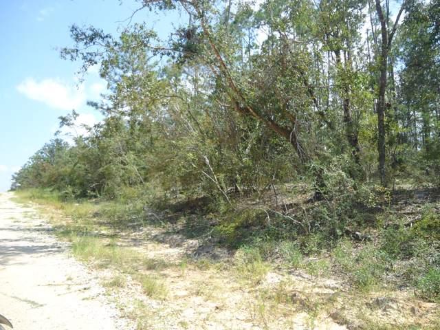 00 Hillside Drive, Marianna, FL 32448 (MLS #688457) :: Keller Williams Emerald Coast