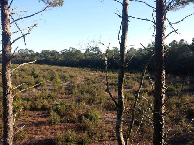 0000 Unassigned, Perry, FL 32348 (MLS #688849) :: Scenic Sotheby's International Realty
