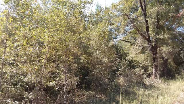 5.3 acres Tobe Retherford Road, Bonifay, FL 32425 (MLS #688891) :: ResortQuest Real Estate