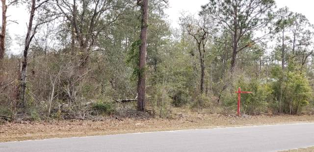 0000 N Fox Court Court, Chipley, FL 32428 (MLS #689415) :: Scenic Sotheby's International Realty