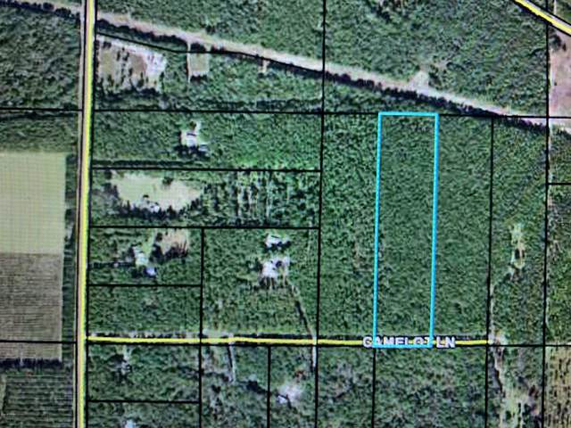 0000 Camelot Lane, Marianna, FL 32446 (MLS #689702) :: Counts Real Estate on 30A