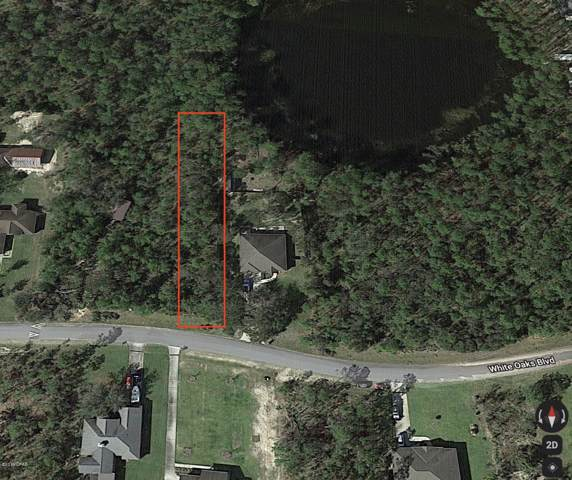 207 White Oaks Boulevard, Southport, FL 32409 (MLS #690645) :: Counts Real Estate on 30A