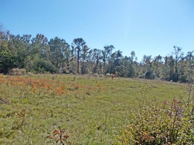 7061 Lewis Lane, Grand Ridge, FL 32442 (MLS #691097) :: Counts Real Estate Group