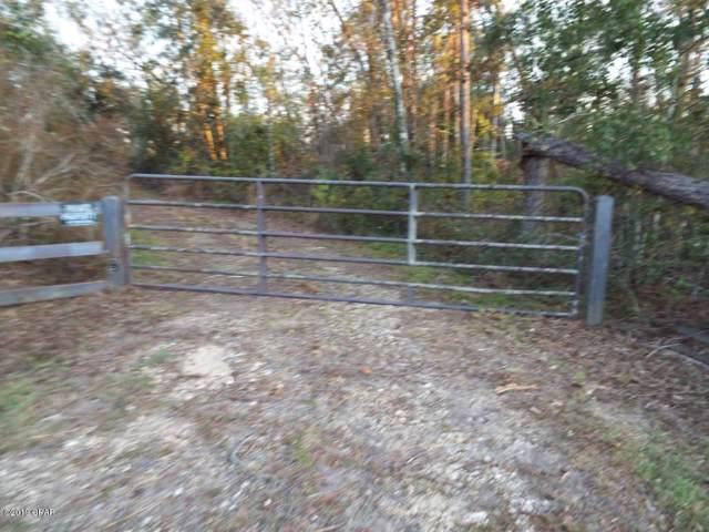 5459 S Sr 71, Kinard, FL 32449 (MLS #691149) :: Counts Real Estate Group