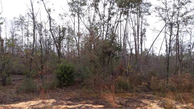 1.1 acre Effigy Street, Alford, FL 32420 (MLS #692114) :: Counts Real Estate Group