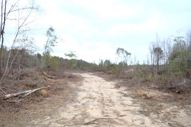 XXX Ten Mile Road, Bonifay, FL 32425 (MLS #692382) :: Scenic Sotheby's International Realty