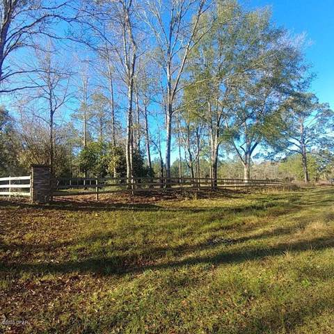 Lot 41 Reedy Creek Crossing, Westville, FL 32464 (MLS #692425) :: Keller Williams Emerald Coast