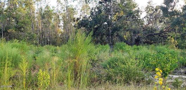 Lots 1,2,3 Cutchens Road, Southport, FL 32409 (MLS #693082) :: Scenic Sotheby's International Realty