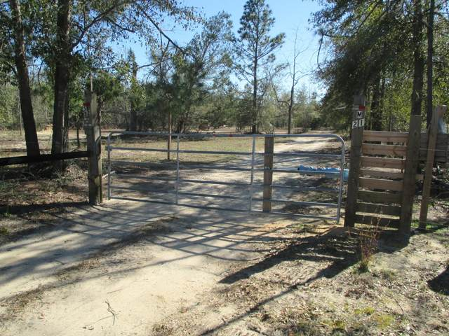 32 Murchison Lane, Alford, FL 32420 (MLS #693946) :: ResortQuest Real Estate