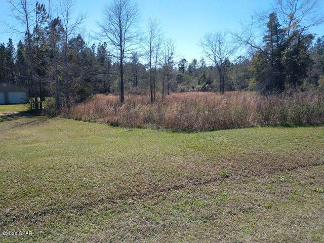 00 Kenzie Lane, Chipley, FL 32428 (MLS #694190) :: Team Jadofsky of Keller Williams Success Realty