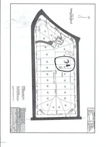 LOTS 7&8 Lee Street, Lynn Haven, FL 32444 (MLS #695778) :: Counts Real Estate on 30A