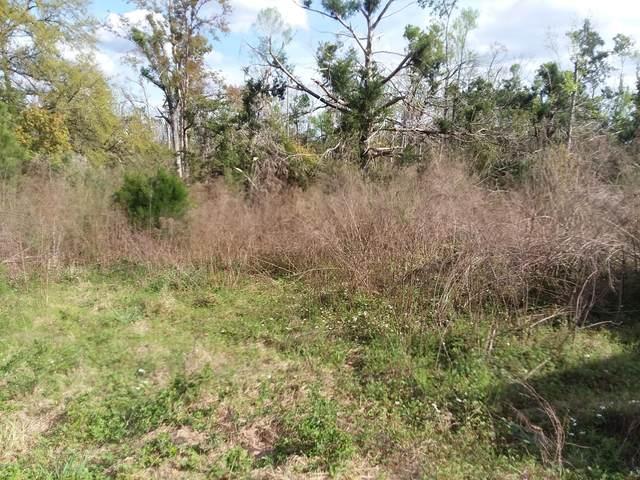 2484 Lark Lane, Marianna, FL 32448 (MLS #696182) :: Counts Real Estate Group