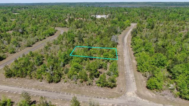 LOT 21 Hanover Avenue, Chipley, FL 32428 (MLS #696578) :: Scenic Sotheby's International Realty
