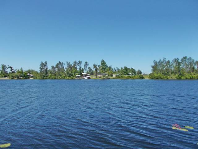 519 Mcpherson Drive, Alford, FL 32420 (MLS #696828) :: Counts Real Estate Group, Inc.