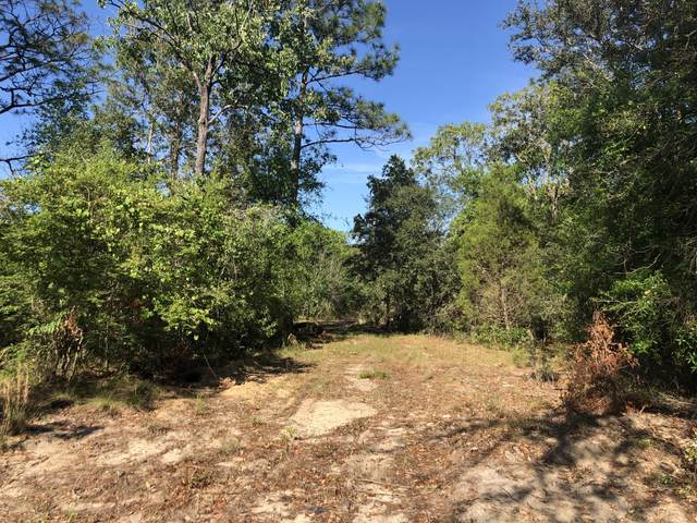 3385 Cardinal Lane, Chipley, FL 32428 (MLS #696895) :: EXIT Sands Realty