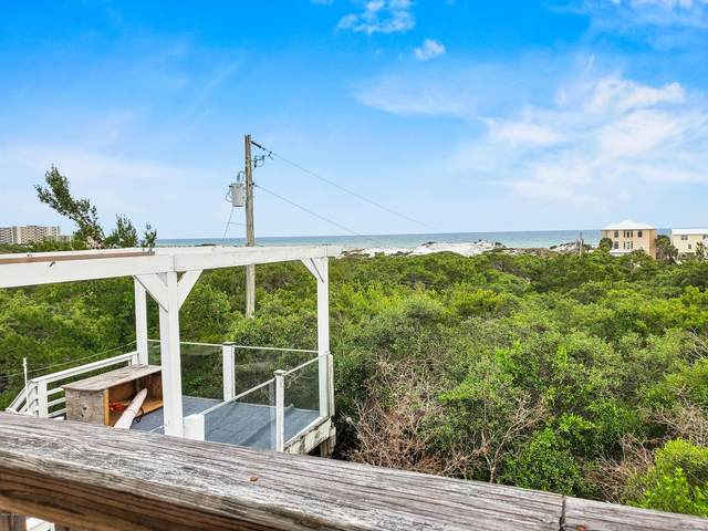 240 E Park Place Avenue, Inlet Beach, FL 32461 (MLS #697040) :: Scenic Sotheby's International Realty