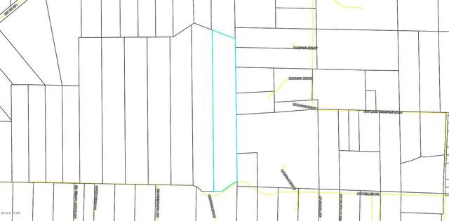 lot 28 NW Miller Road, Altha, FL 32421 (MLS #697130) :: Anchor Realty Florida