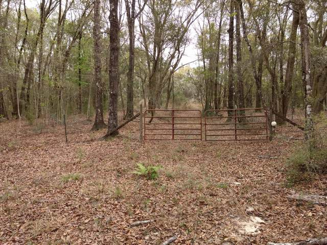 4365 Simmons Road, Caryville, FL 32427 (MLS #697927) :: Scenic Sotheby's International Realty