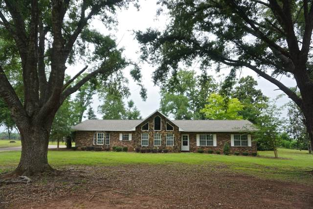 4598 Oakwood Drive, Marianna, FL 32446 (MLS #698093) :: Counts Real Estate Group