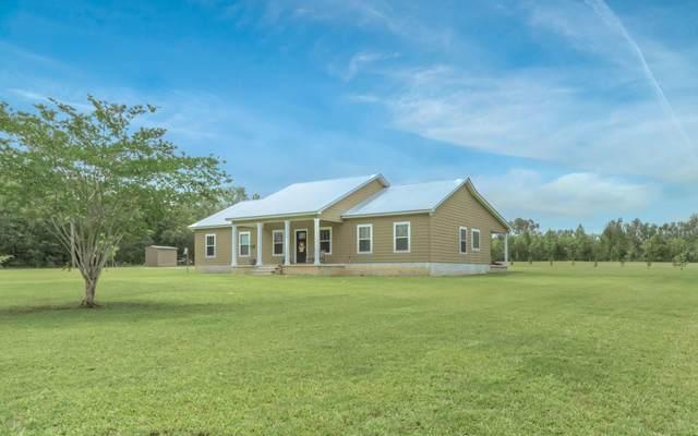 826 Crosswind Lane, Cottondale, FL 32431 (MLS #698141) :: Counts Real Estate Group