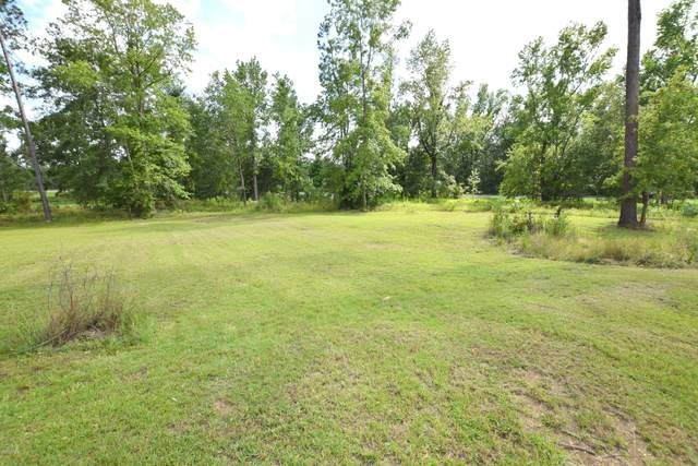XXX Haywood Drive, Chipley, FL 32428 (MLS #698428) :: Counts Real Estate Group