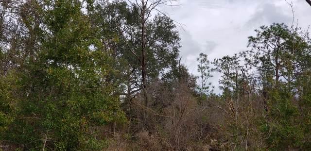 B 209A N Fox Court, Chipley, FL 32428 (MLS #699304) :: Anchor Realty Florida