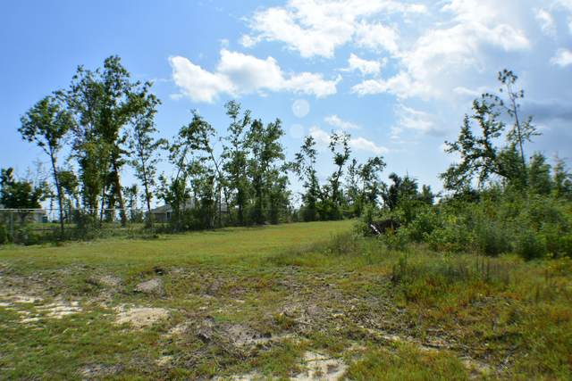 5611 Scenic Drive, Panama City, FL 32404 (MLS #699505) :: Keller Williams Realty Emerald Coast