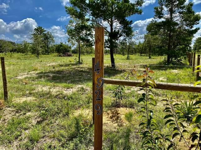 4929 Tiger Trail, Chipley, FL 32428 (MLS #699556) :: Scenic Sotheby's International Realty