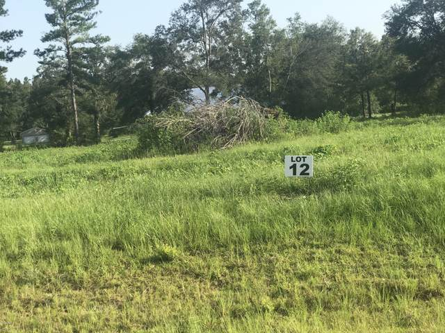 Lot 12 Madison Lane, Chipley, FL 32428 (MLS #700280) :: Counts Real Estate Group, Inc.