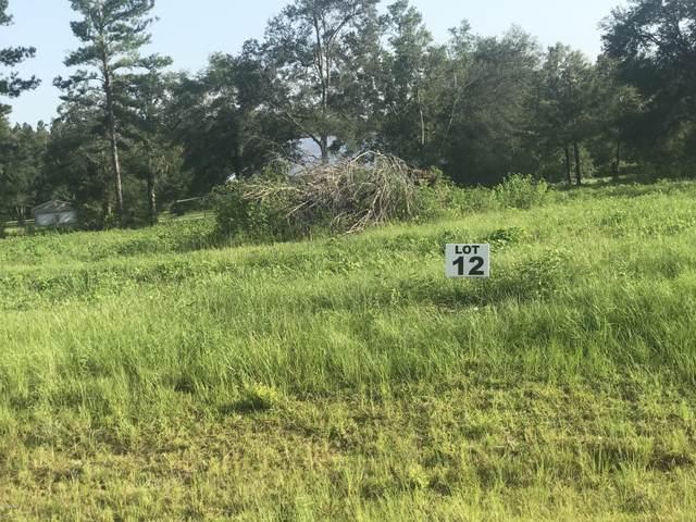 Lot 12 Madison Lane, Chipley, FL 32428 (MLS #700280) :: Counts Real Estate Group