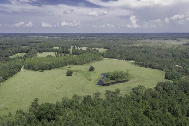 000 Pine Ridge Road, Bonifay, FL 32425 (MLS #700645) :: Team Jadofsky of Keller Williams Realty Emerald Coast