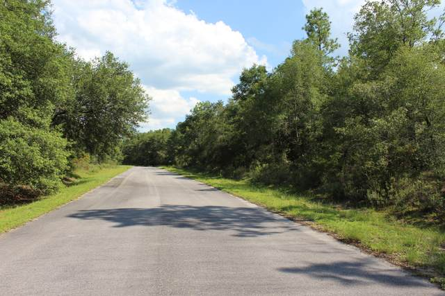 Lot 16 Arnone Lane, Chipley, FL 32428 (MLS #701160) :: Keller Williams Realty Emerald Coast