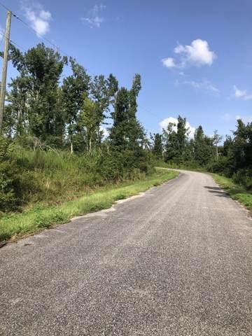 0 NW Rosewood Circle, Altha, FL 32421 (MLS #701337) :: Team Jadofsky of Keller Williams Realty Emerald Coast