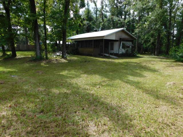 140 Lawnview Drive, Wewahitchka, FL 32465 (MLS #701948) :: Counts Real Estate Group