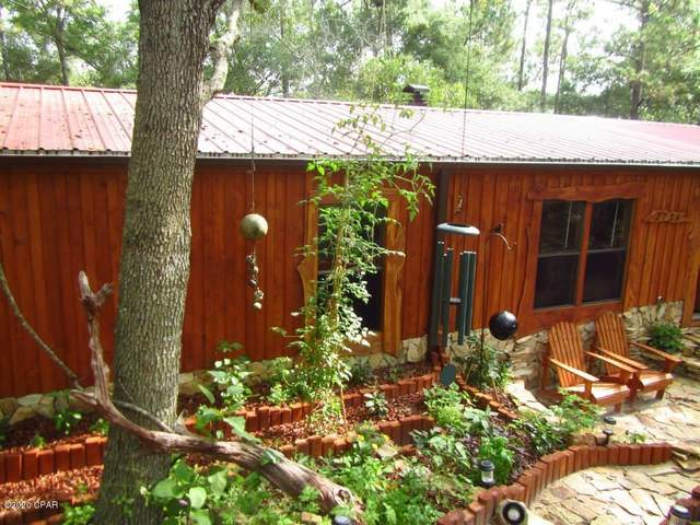 2734 Mosquito Road, Chipley, FL 32428 (MLS #702934) :: Counts Real Estate Group, Inc.