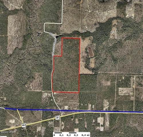 0000 N Blue Springs Road, Chipley, FL 32428 (MLS #703581) :: Counts Real Estate Group, Inc.