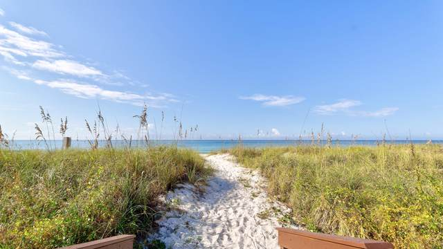 13401 Oleander Drive, Panama City Beach, FL 32407 (MLS #703862) :: Vacasa Real Estate