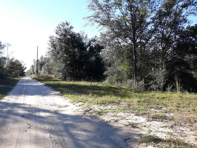 2180 Crovetti Way, Alford, FL 32420 (MLS #703907) :: Team Jadofsky of Keller Williams Realty Emerald Coast
