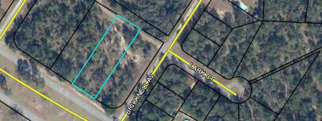 000 Sunny Hills Boulevard, Chipley, FL 32428 (MLS #703913) :: Counts Real Estate on 30A