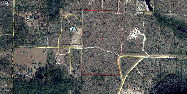 TBD NW Lake Mckenzie Shores Boulevard, Altha, FL 32421 (MLS #704956) :: Team Jadofsky of Keller Williams Realty Emerald Coast