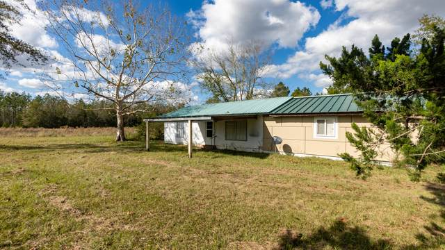 1750 Clayton Road, Chipley, FL 32428 (MLS #705052) :: The Ryan Group