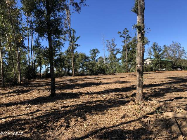 0000 Flynt Drive, Marianna, FL 32446 (MLS #706195) :: Counts Real Estate Group