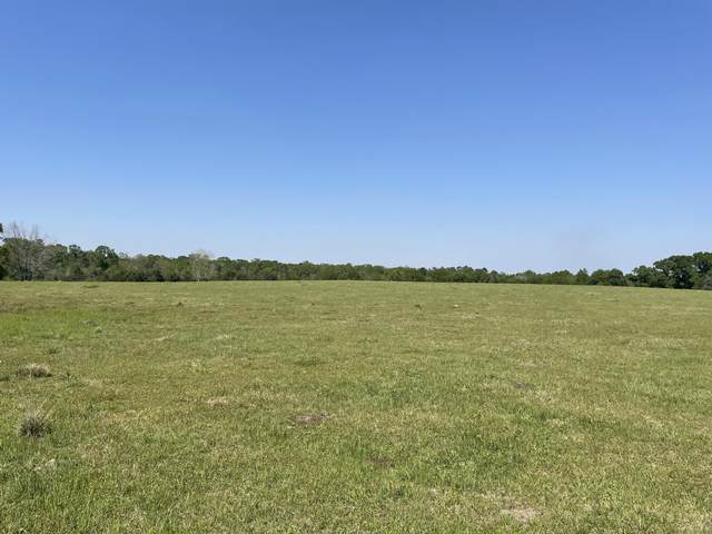 125 Acre Kirkland Road, Graceville, FL 32440 (MLS #710035) :: Scenic Sotheby's International Realty