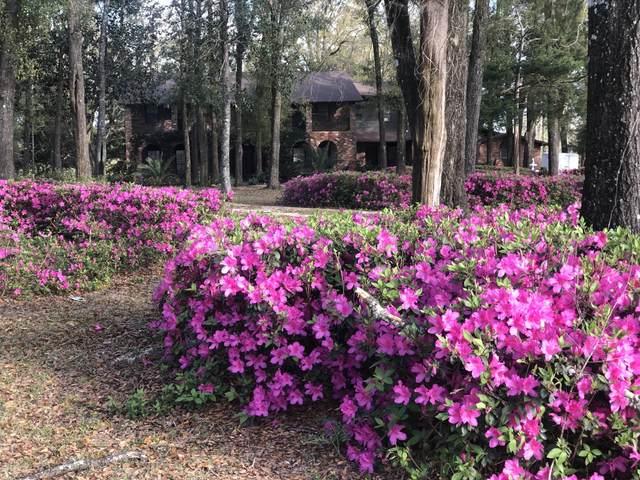 3449 S Bonnett Pond Road, Chipley, FL 32428 (MLS #710262) :: The Premier Property Group