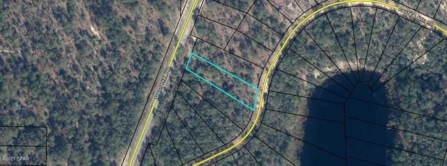 0000 Payne Lake Road, Chipley, FL 32428 (MLS #711172) :: The Premier Property Group