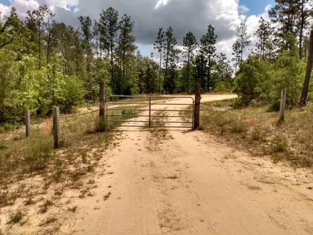 447 Pittman Hill Road, Marianna, FL 32448 (MLS #711229) :: Corcoran Reverie