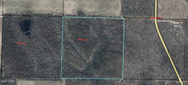 000 Maddox Road, Marianna, FL 32448 (MLS #711407) :: Counts Real Estate on 30A