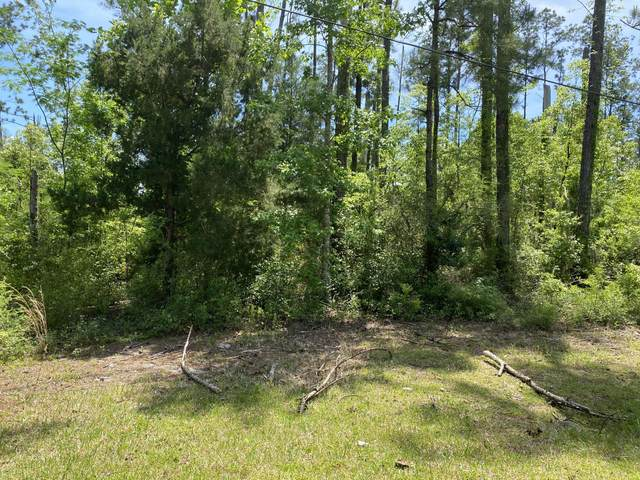 226 Maple Avenue, Wewahitchka, FL 32465 (MLS #711799) :: Counts Real Estate Group