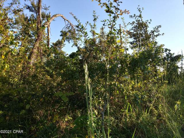 Address Not Published, Panama City, FL 32401 (MLS #712229) :: Counts Real Estate Group